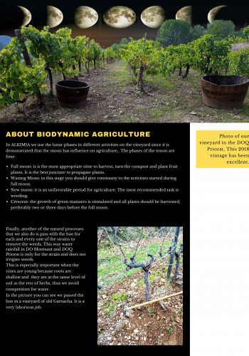 News 04 Eng 2 Biodinamic Agriculture