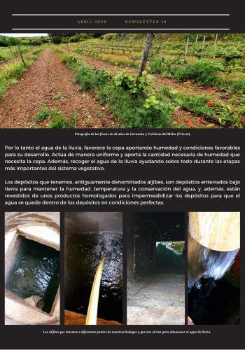 News 19-2 CAST el agua de la lluvia