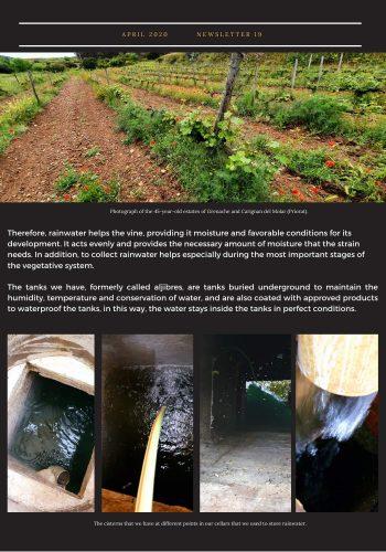 News 19-2 ENG rainwater