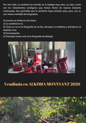 News 27 CAST-2 Vendimia en ALKIMIA MONTSANT 2020