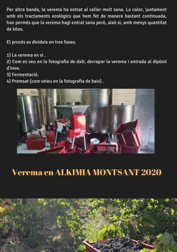 News 27 CAT-2 Verema en ALKIMIA MONTSANT 2020
