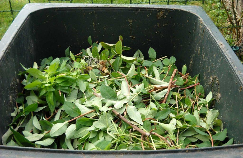 Imagen de compost Gestion de Residuos